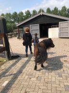 Esther en pony